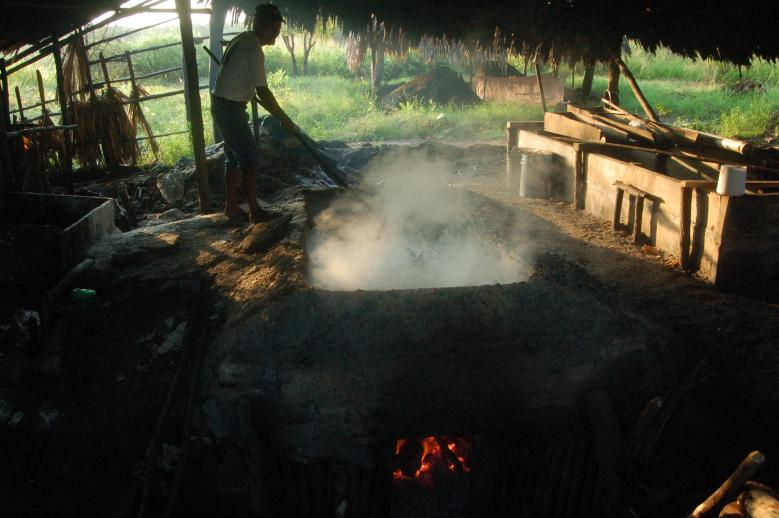 Traditional salt extraction